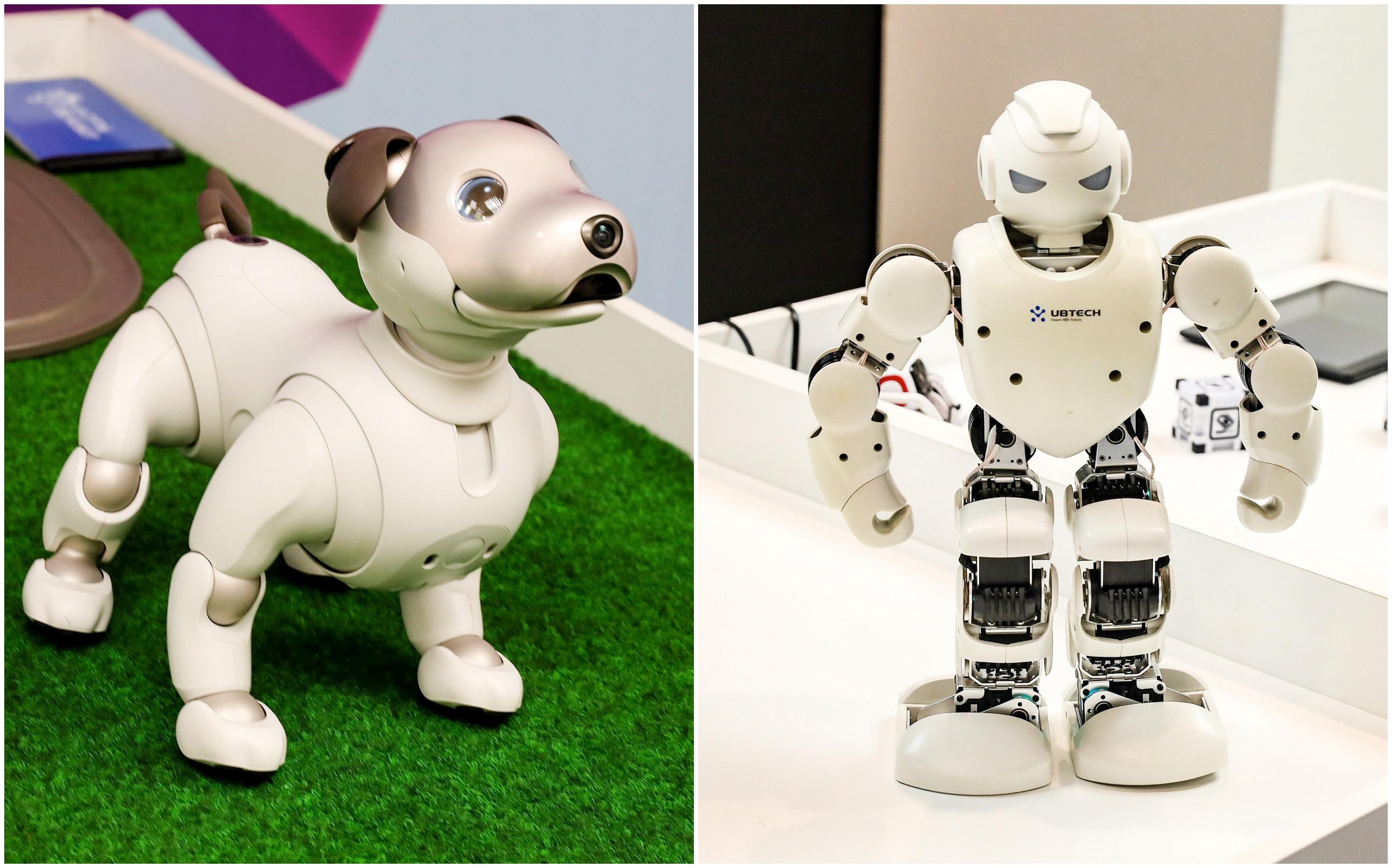 nauji prekybos robotai lengviausias sąžiningas uždarbis